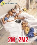 dem-roland-2m-x-2m2