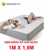 dem-bong-ep-han-quoc-1m-x-1m9
