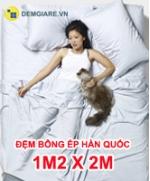 dem-bong-ep-han-quoc-1m2-x-2m