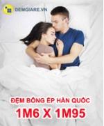 dem-bong-ep-han-quoc-1m6-x-1m95