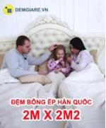 dem-bong-ep-han-quoc-2m-x-2m2